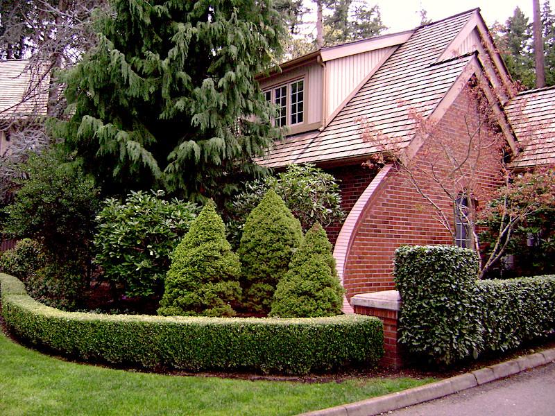 Residential Shake Reroof in Bellevue, WA