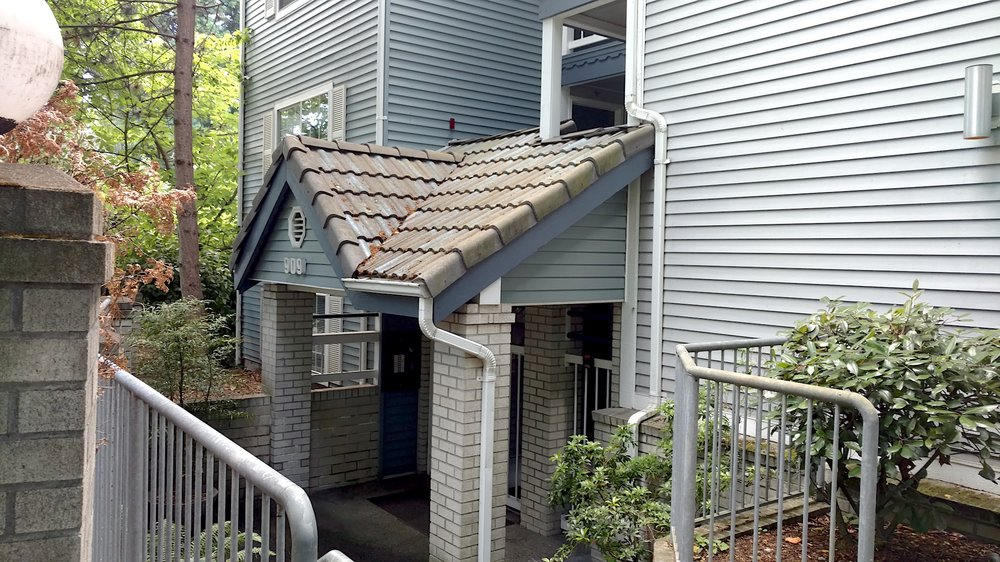 multifamily roofing cleaning Seattle WA