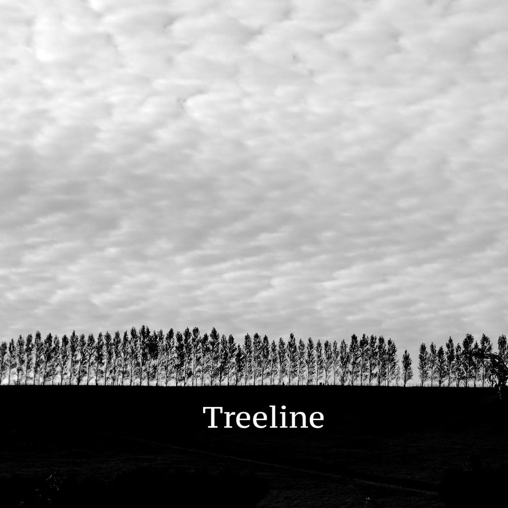treelineB&W.jpg