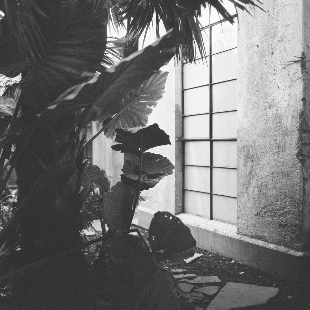 Mexico-City-Decada-Vintage-Furniture-Garden-BW.jpg