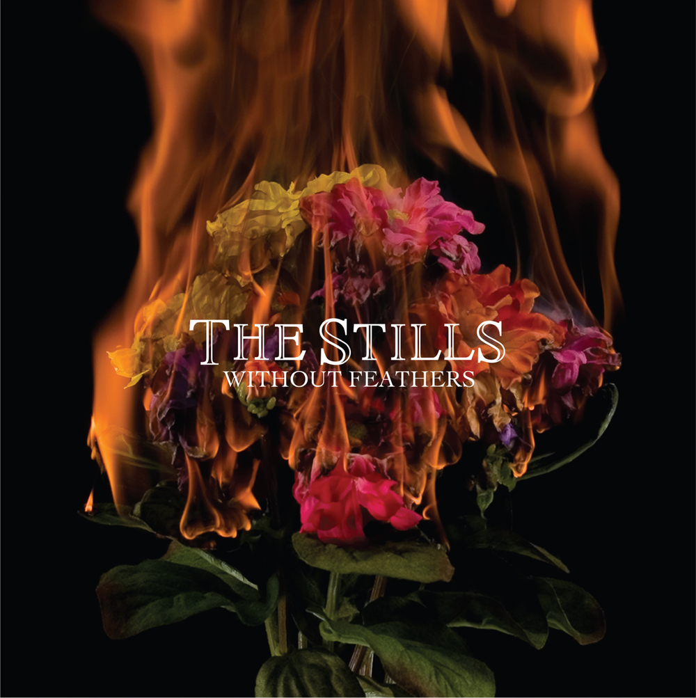 THE STILLS- 'WITHOUT FEATHERS' ALBUM