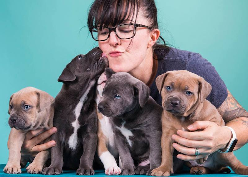 Alyson Snelling canine massage at Back on Track.jpg