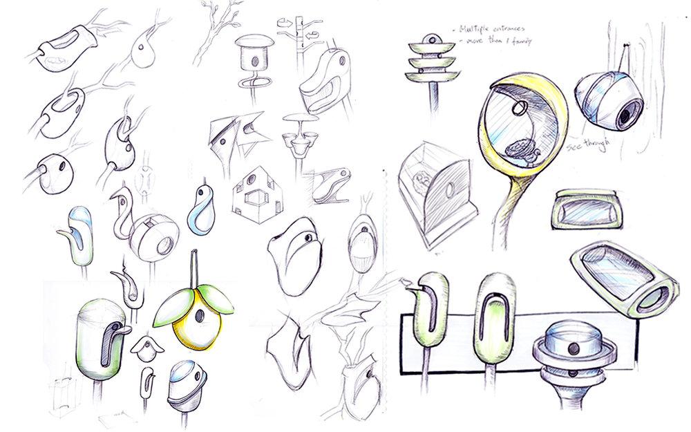 sketches2.jpg
