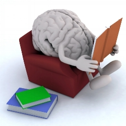 It's hard for students to know what the brain of an expert reader is doing.