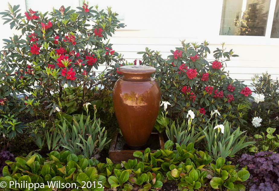 Garden-Pot-Photo web.jpg