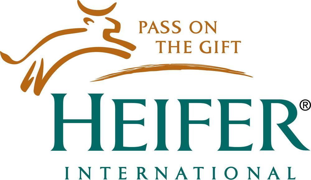 heifer.jpg