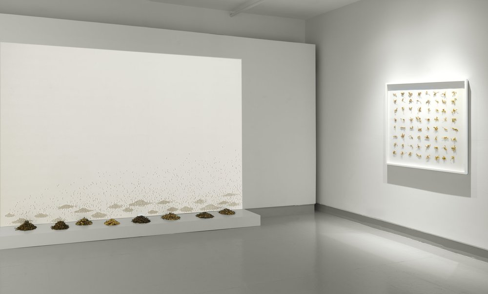 Installation View at the Miller Yezerski Gallery