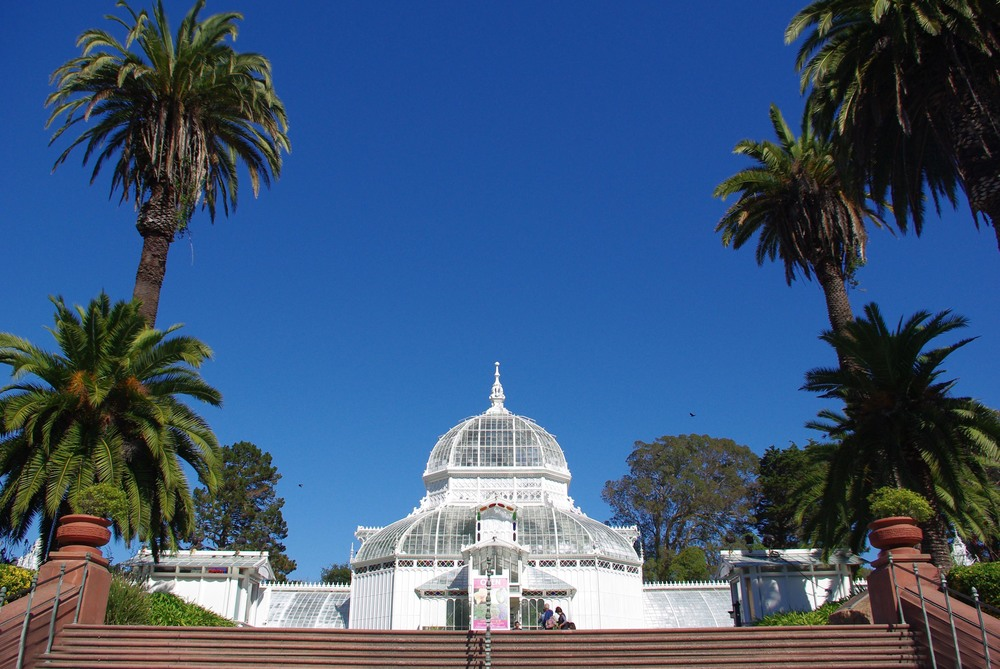 7.	Wander through the Golden Gate Park and Botanical Garden