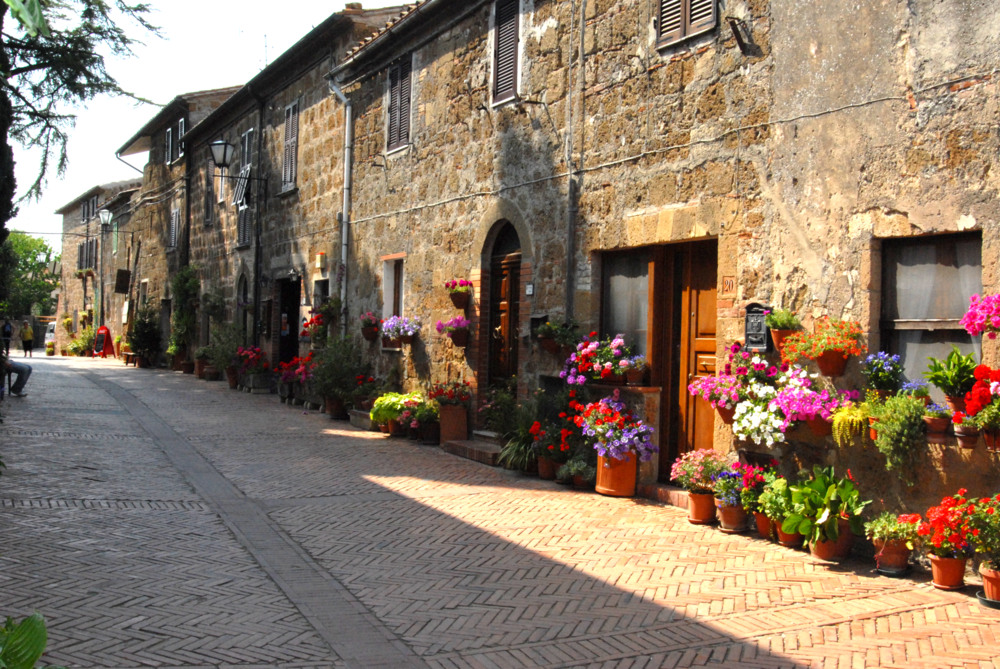 Sovana Street Flowers.png