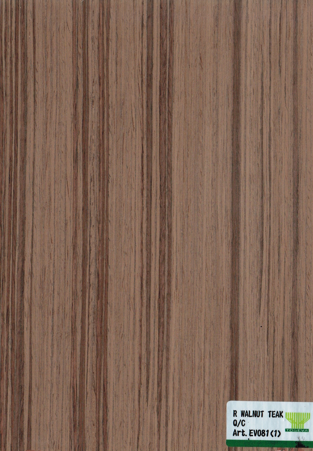 R WALNUT TEAK Q:C - EV081 (1).jpeg
