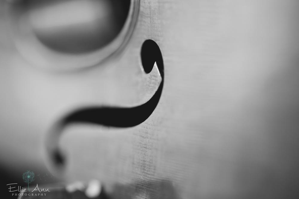 Violin-12.jpg