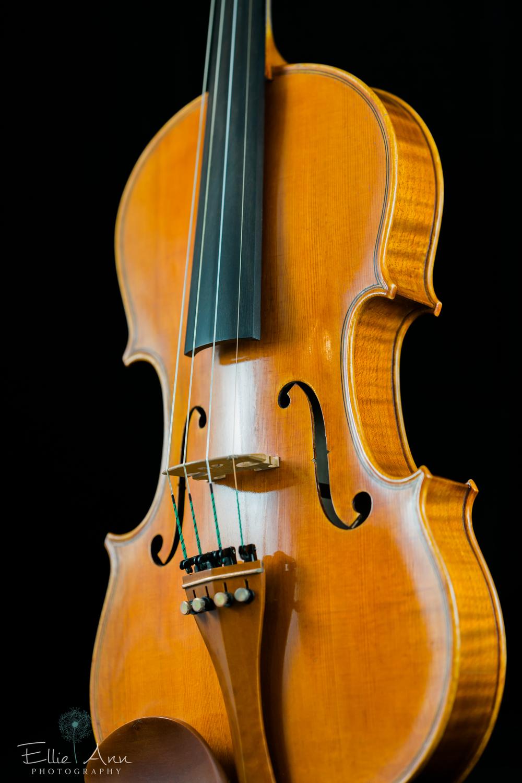 Violin-24.jpg