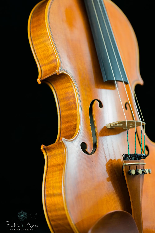 Violin-29.jpg