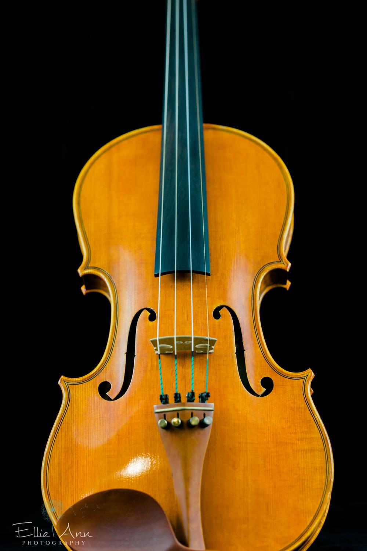 Violin-33.jpg