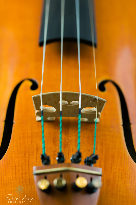 Violin-8.jpg
