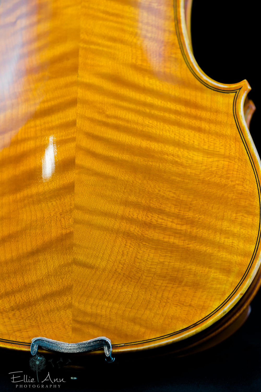 Violin-22.jpg