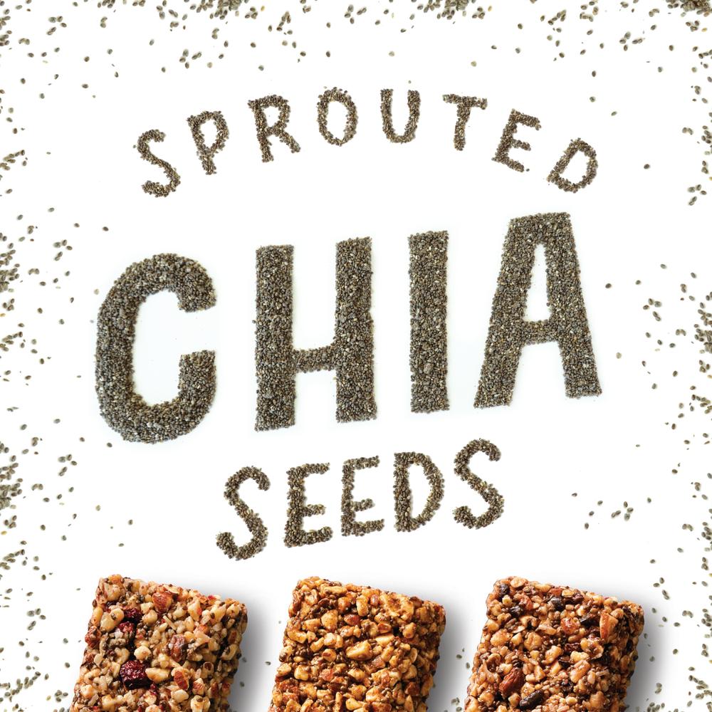 LÄRABAR Nut & Seed®