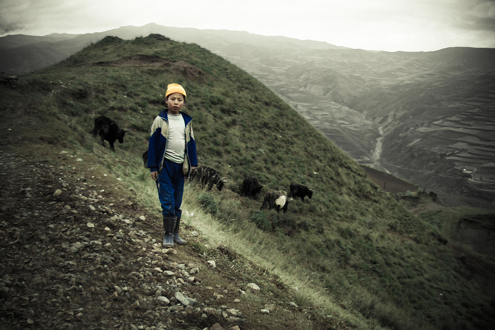 Herdboy in Shyachung, Tibet