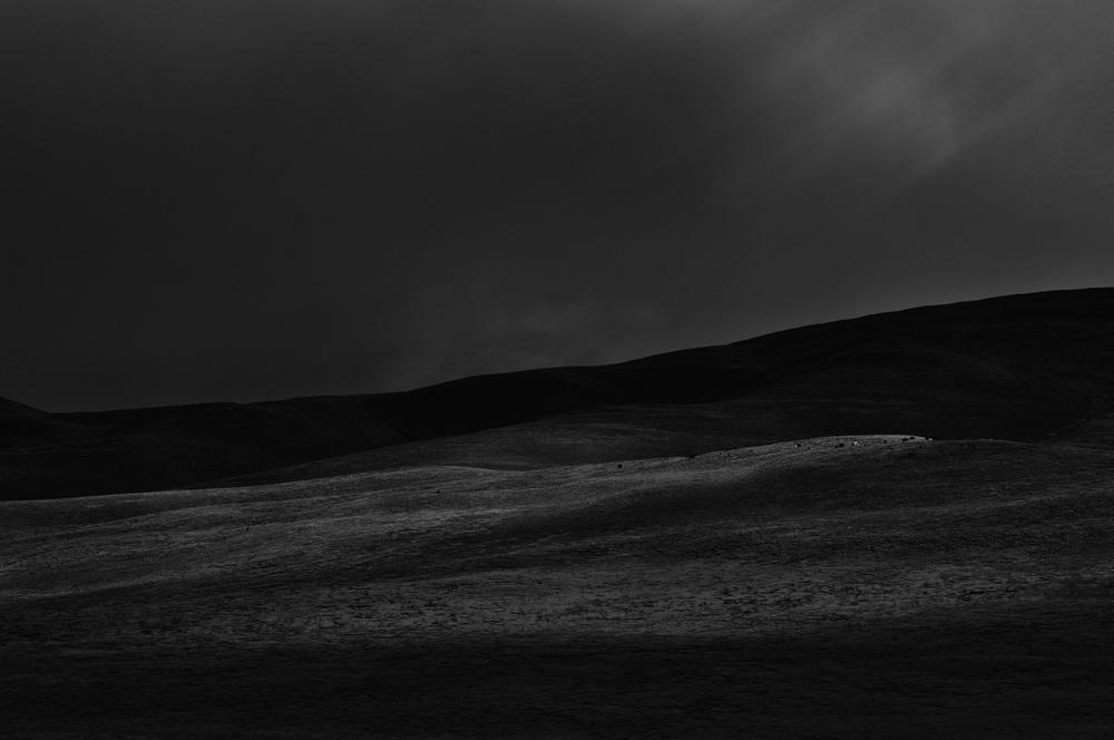 Grassland I, Tibet