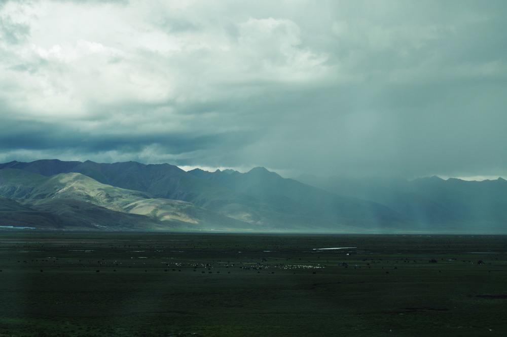 Storm and Yaks, Tibet