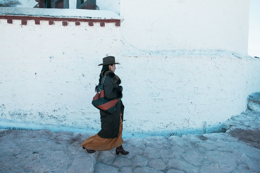 lhasa-fashion-potala.jpg