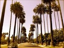 LA Pic 2.jpg