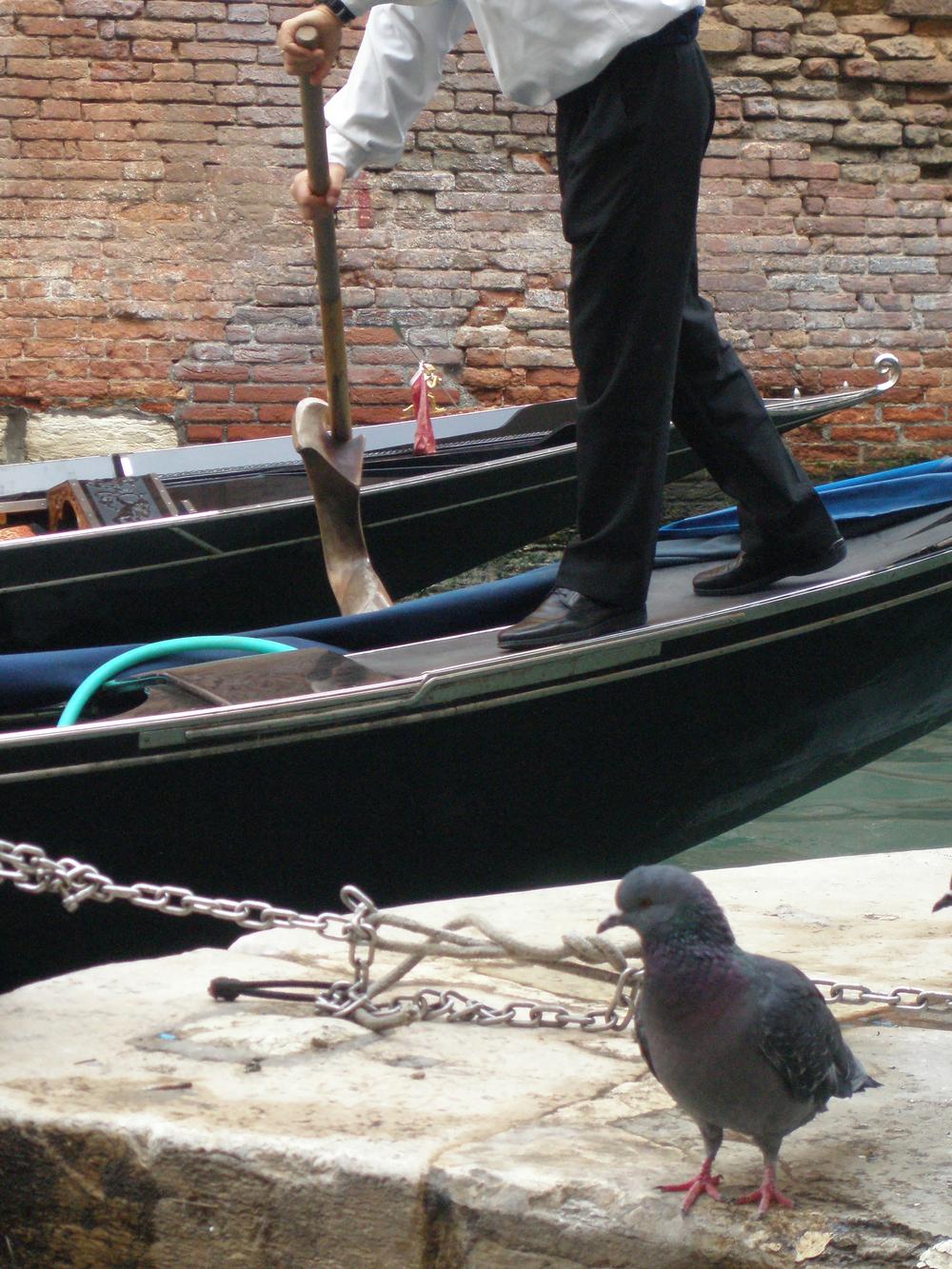 Aurora, Venice