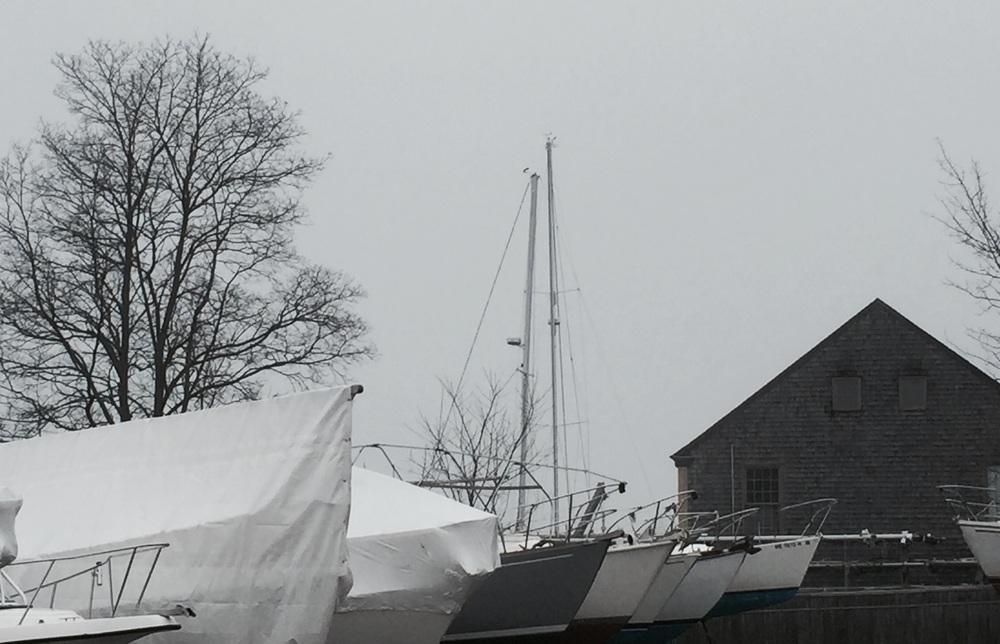 Brewer's Marina in the fog