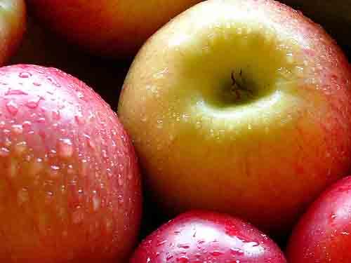 fresh_apples.jpg