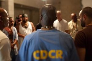 the work dogwoof global documentary