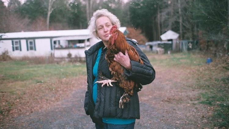 For+The+Birds+-+Dogwoof+Documentary.jpg