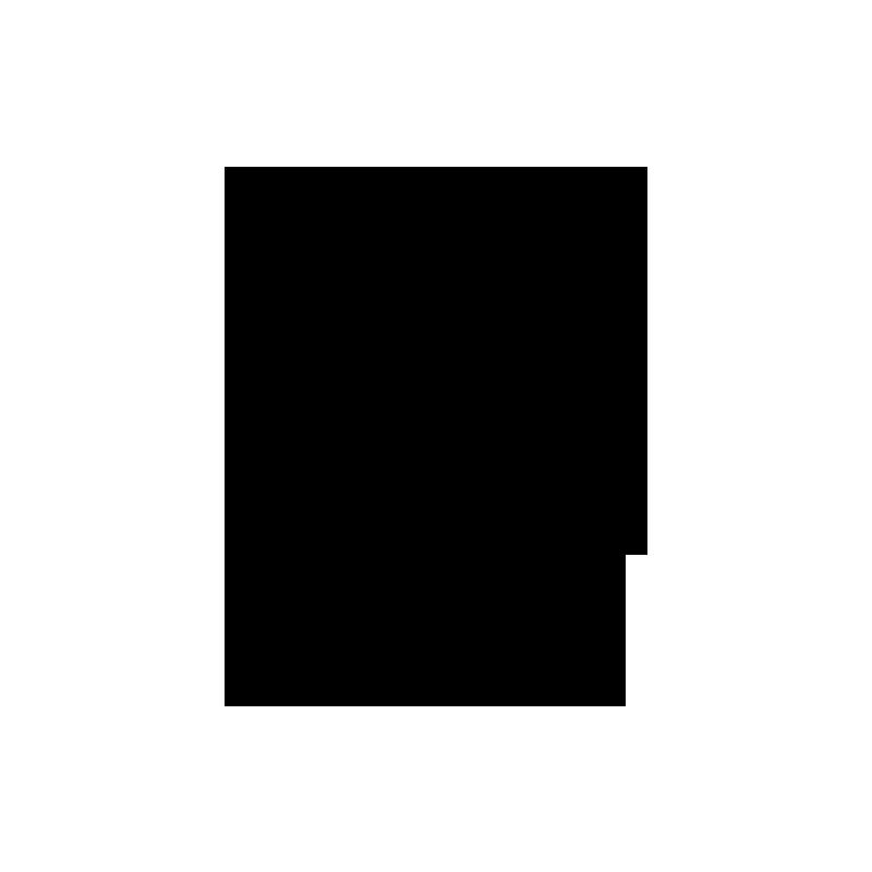 noun_883111_cc.png