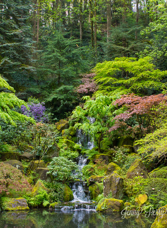 The Portland Japanese Gardens