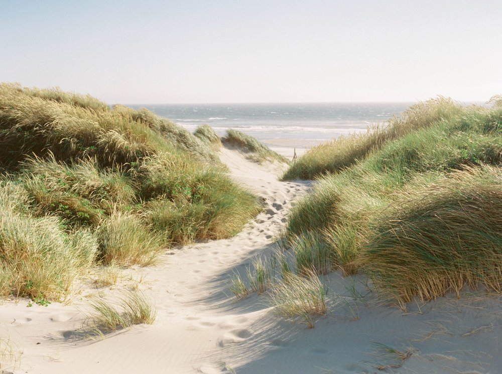 Hochzeitsguide: Footprints in the Sand