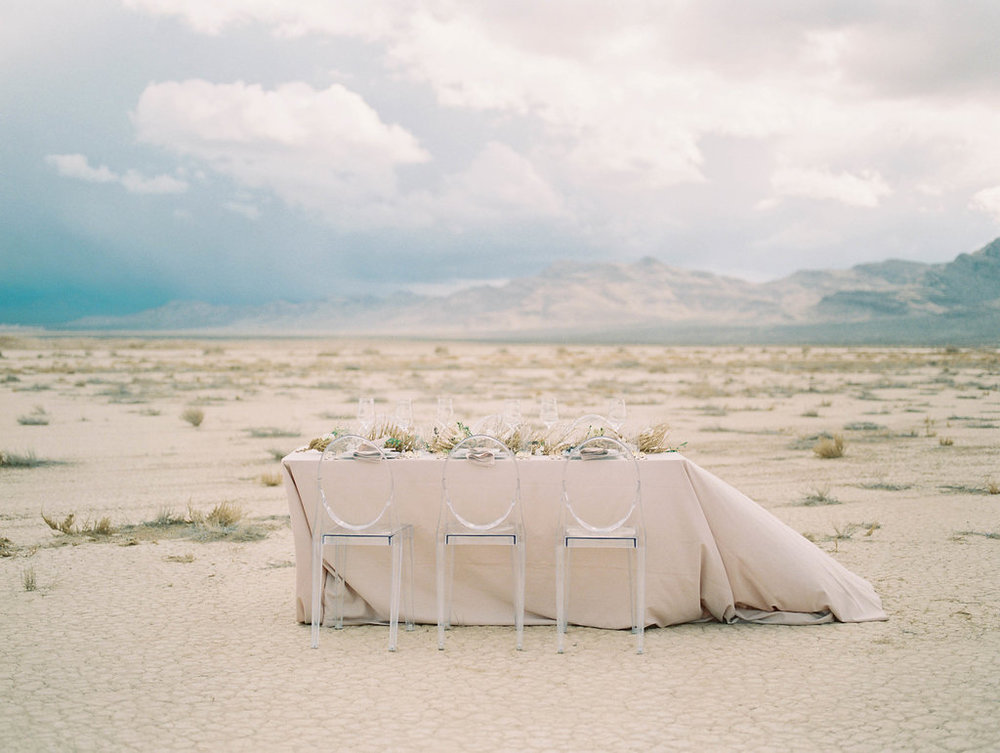 Windswept Bridals Under A Stormy Desert Sky