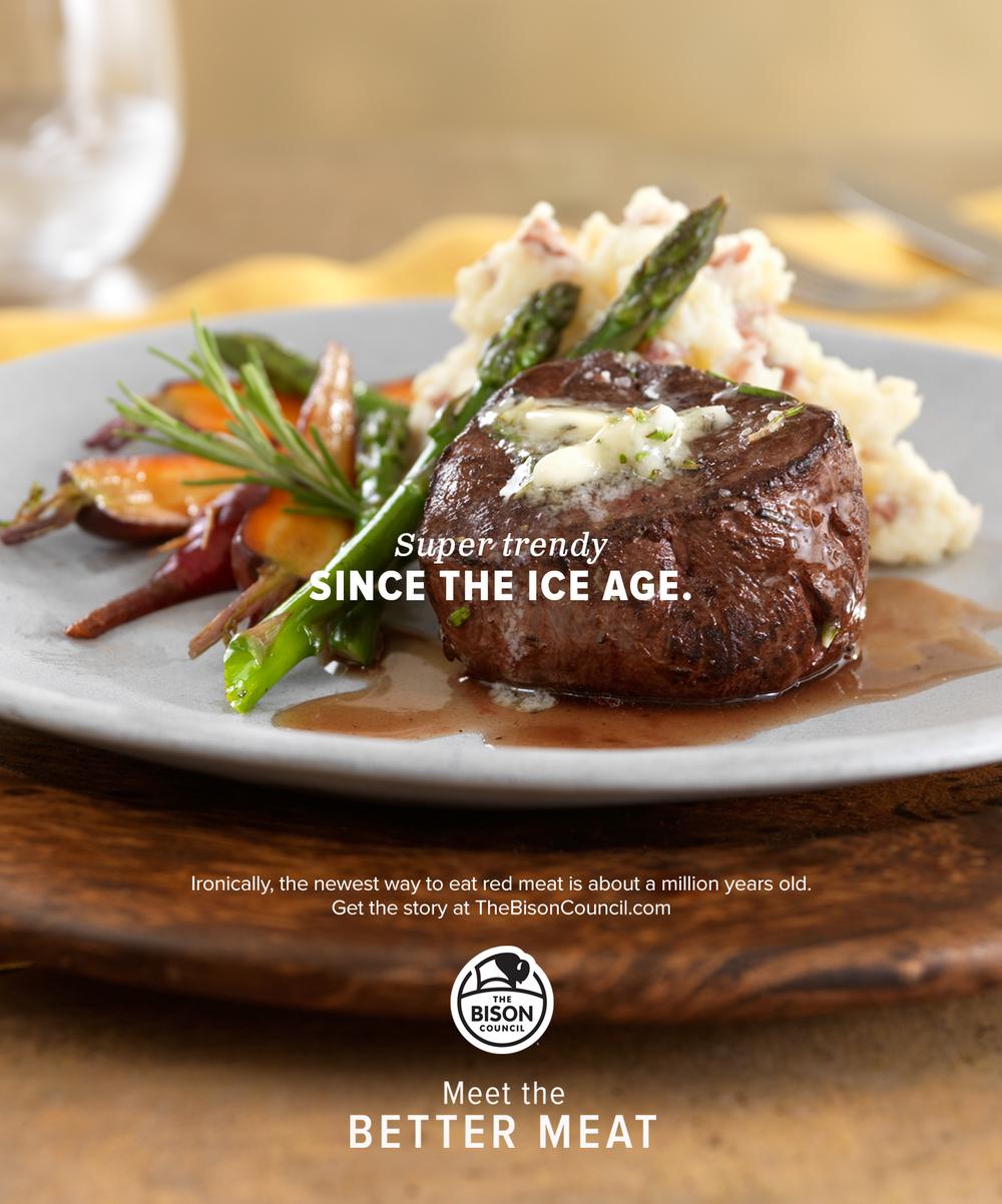 bison_ice-age_kk.jpg