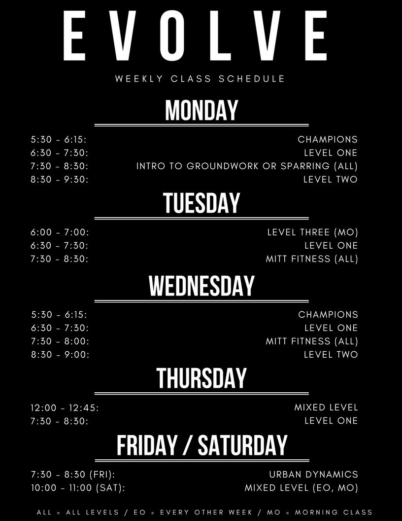 Evolve Schedule.jpg