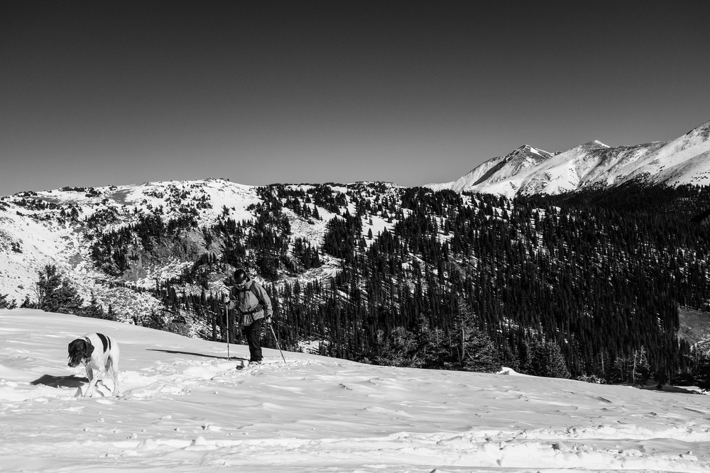 Walden setting the skin track for some backcountry skiing in November