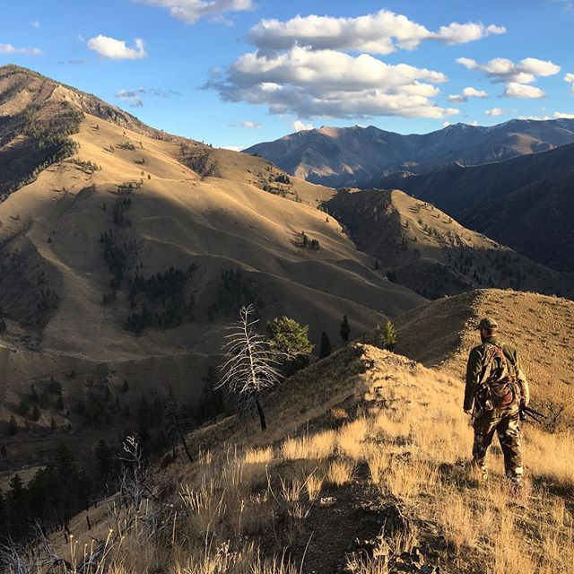 #tbt to a picture perfect day on public lands in the #frankchurchwilderness. If you care about our public lands, get involved with @thetrcp, @troutunlimited, or @backcountryhunters and do something about it. #publiclandsproud #keepitpublic #muledeer #hunting #idaho #threatsaplenty #americanheritage