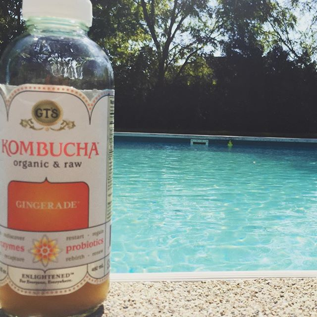 Afternoon @gtskombucha & pool weather in fall 👌🏻#perfectday . . . . . #pool #poolday #fall #kombucha #drink #ginger #yum #wellness #wellbeing #health #healthy #healthylifestyle #loveyourself #selfcare #selflove