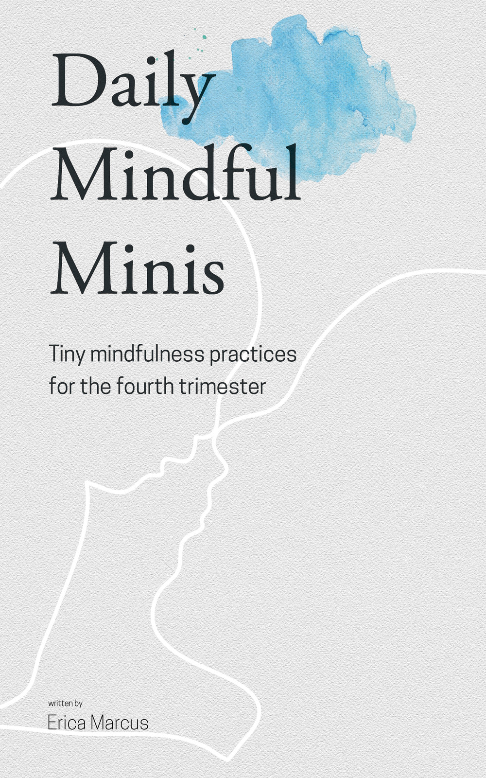 Daily Mindful Minis - Cover.jpg