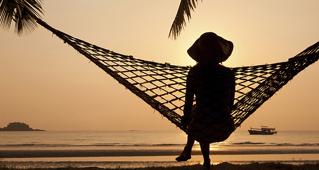 hammock_banner2_cropped2.jpg