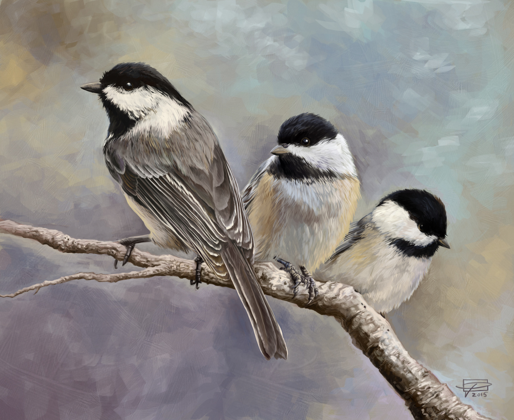 Three Little Chickadees