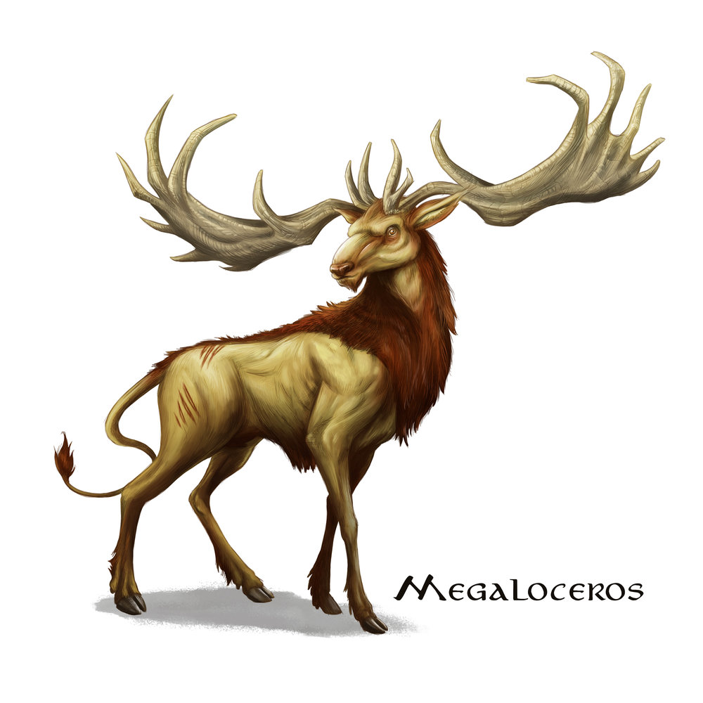 Megaloceras