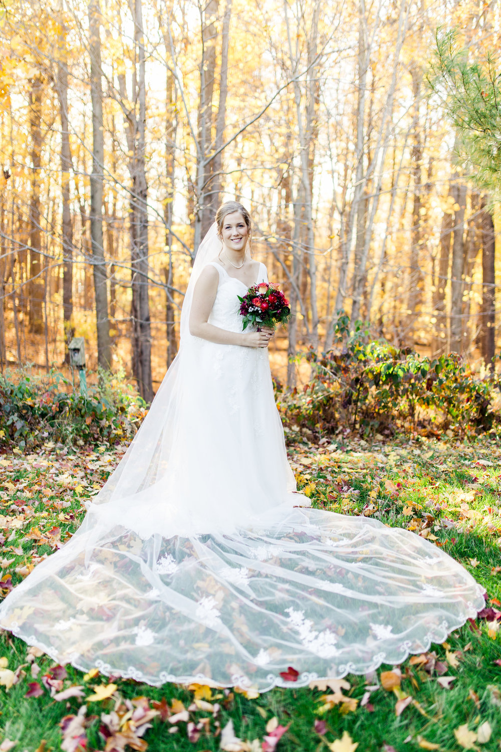 Beautiful_Antique_Veil_Fall