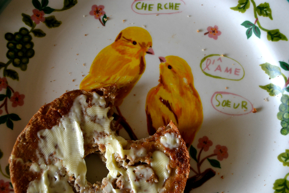 cinnamon raisin bagel anthropologie plate birds