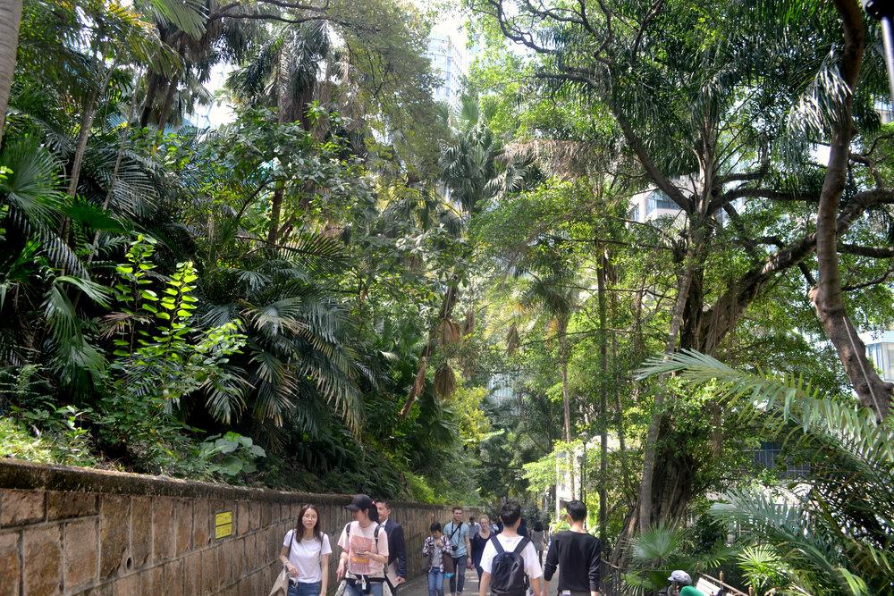 Hong Kong Gardens.jpg