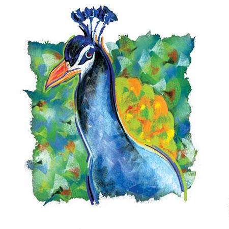 mgayle_peacock.jpg
