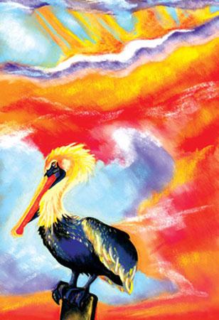 mgayle-pelican.jpg