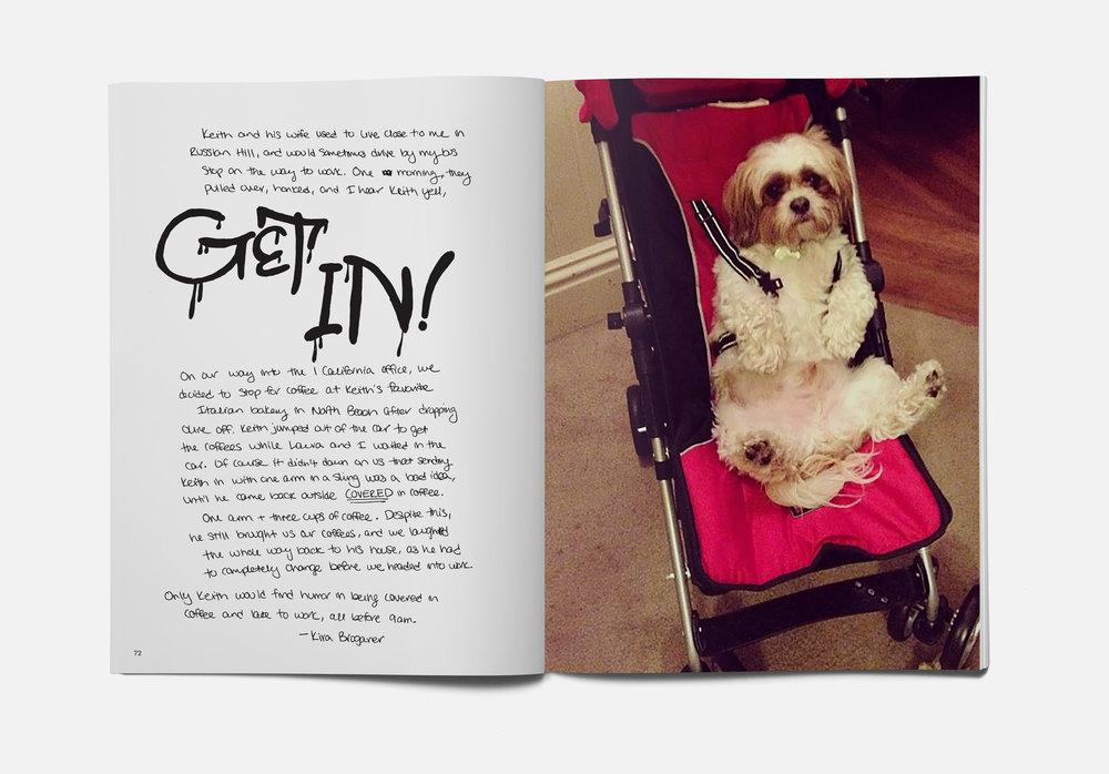 Get In dog.jpg